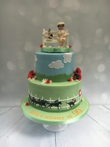 Adults-Birthday-Cake-Horse-Racing-e1528988696273-225x300